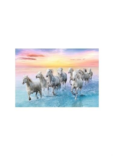 Art Puzzle Art Puzzle Galloping Whıte Horses 500 Parça Kutu Puzzle  Renksiz